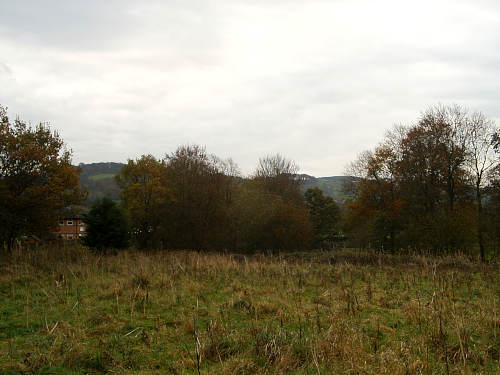 Whalley Forest Garden site, November 2010