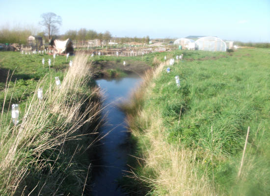 Managing the water in wetlands